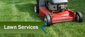 Lawn Mower - Landscape Design