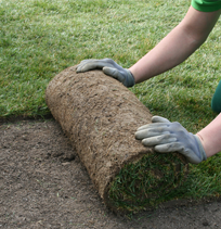Turf Installation - Landscaping Services