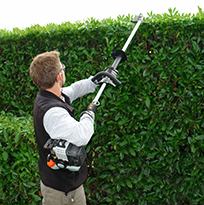 Shrub Management - Landscaping Services